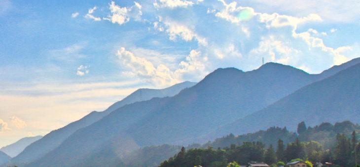 みんな山のような名誉欲に振り回されて生きています。